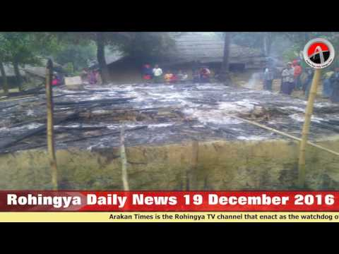 Rohingya Daily News 19 December 2016