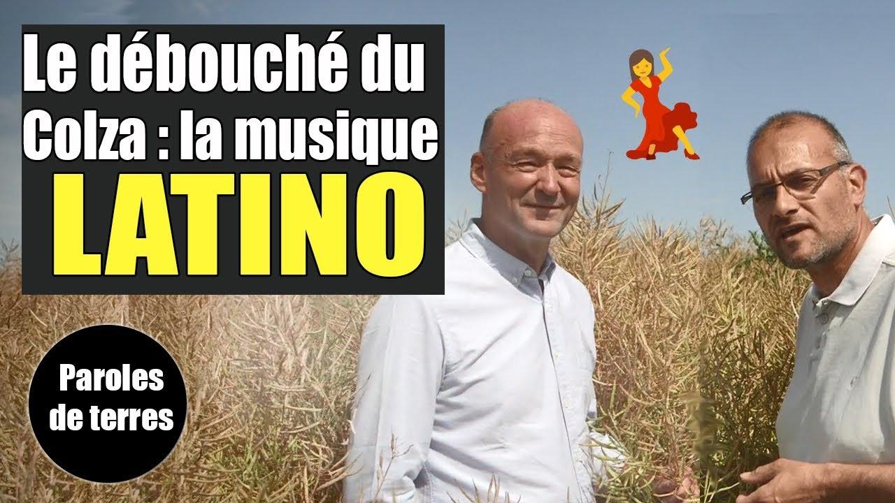 Débouché du Colza : la musique Latino ! Paroles de Terres - Saison 3