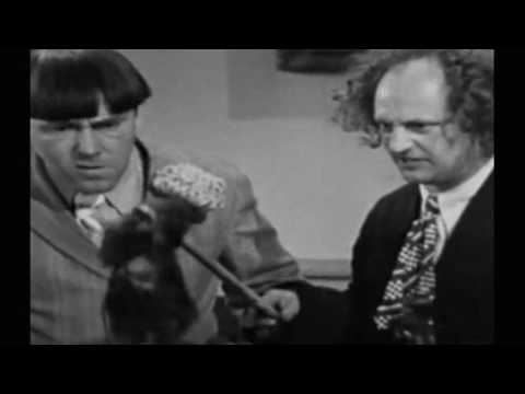 The Three Stooges 1936   S03E04   Disorder in the Court