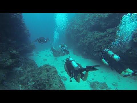 Diving Past Death