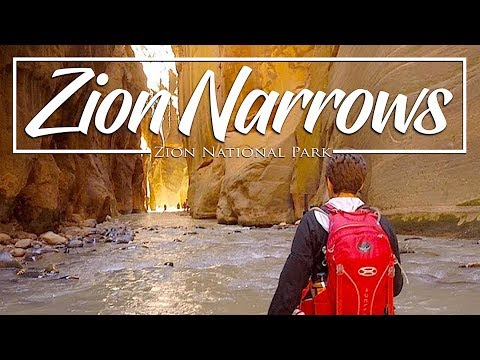 Hiking the Zion Narrows  Zion National Park