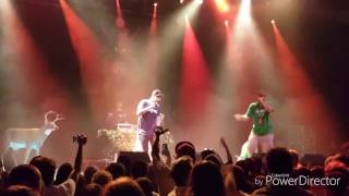 Family Trees does The Impossible Kid Tour (Aesop Rock)