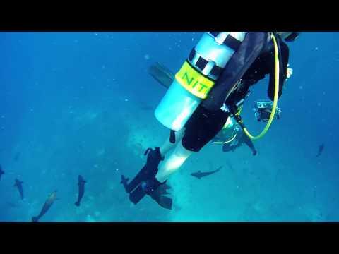 Maldives Trailer