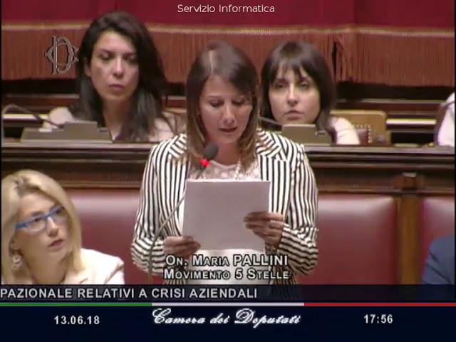 Maria Pallini (M5S) - Intervento in aula su linee generali A.C. 583 - 13/06/2018