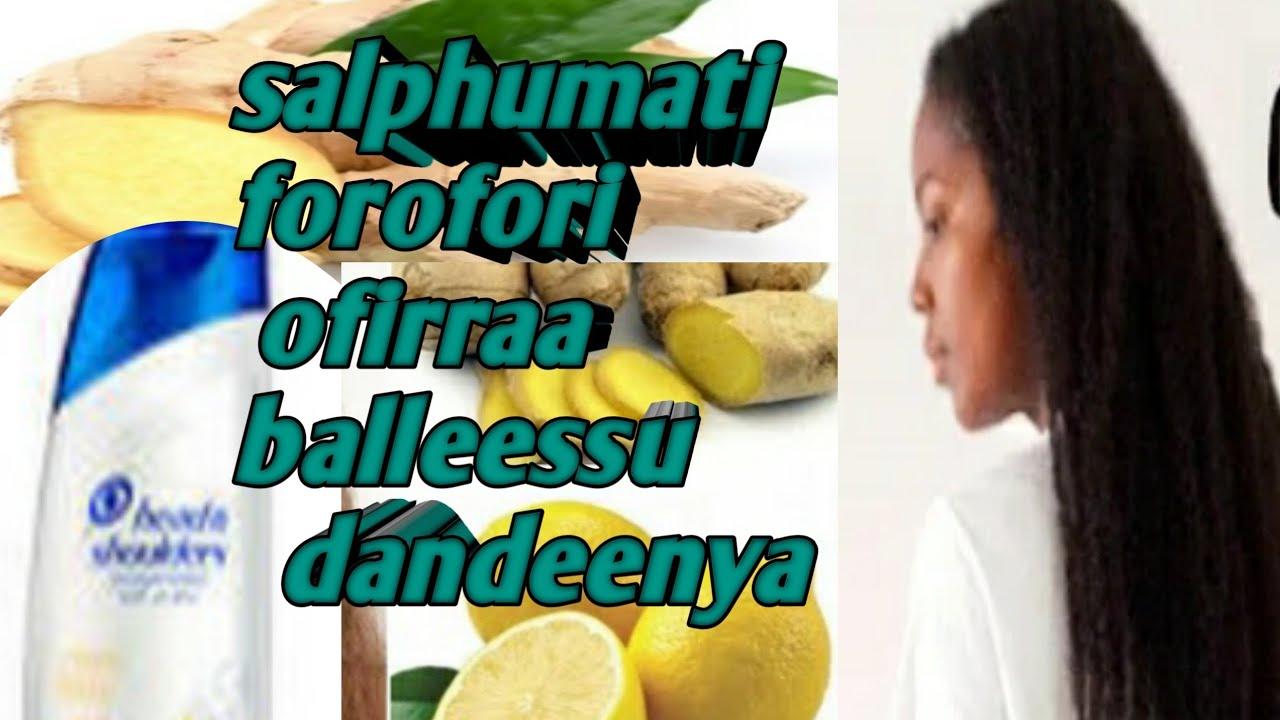 Download forofori akkamitti ofirraaa balleesina warri jettan video kana dawwadha#kebeeki#subscrib