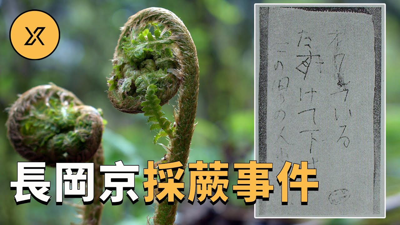 女子下班後上山採蕨菜遭遇不測,日本懸案之長岡京採蕨事件