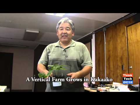 A Vertical Farm Grows in Kakaako