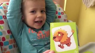 Назови звук. Учим звуки животных и предметов по карточкам