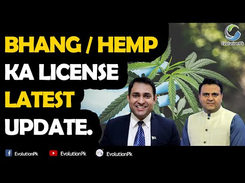 Industrial Hemp Bhang License in Pakistan Update I Shakir Ali Rajput I EvolutionPk –