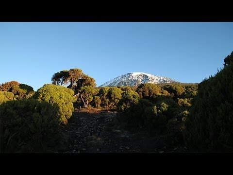 eMi East Africa -- Mount Kilimanjaro Climb 2014