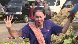 TERNYATA - Conchita Jadi Pemungut Sayuran Bekas Bantu Ibu Sri (3/9/19) Part 2