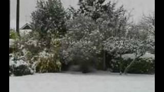 Snow at Rampton