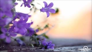 Jon Bach | Above It All (Original Mix)