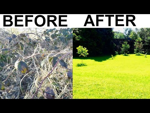 BACK YARD TRANSFORMATION,LAWN START-FINISH HAND MAKEOVER,HOW TO FIX GRASS, NEW REBUILD SOW SEEDS DIY