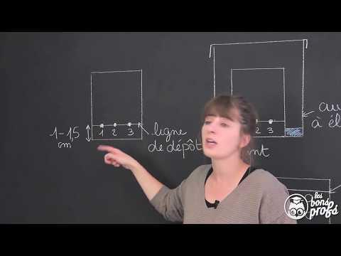 Chromatographie sur couche mince ece physique chimie terminale les bons profs youtube - Chromatographie sur couche mince ...