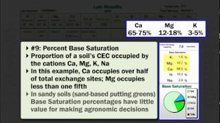 Interpreting Soil Test Results for Turf