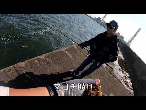 【シーバス】五井沖堤防で世界のJ大島 炸裂!! 【マゴチ】 #2