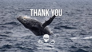 Video Thank You from Sea Shepherd Global download MP3, 3GP, MP4, WEBM, AVI, FLV Juni 2018