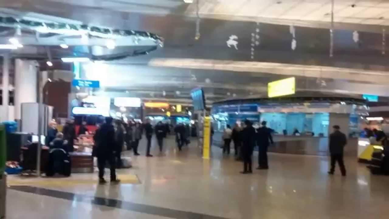фото терминал d шереметьево