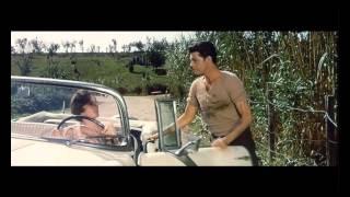 Anna von Brooklyn (1958, Vittorio De Sica, Carlo Lastricati) - Trailer