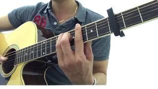 Hoa bằng lăng guitar