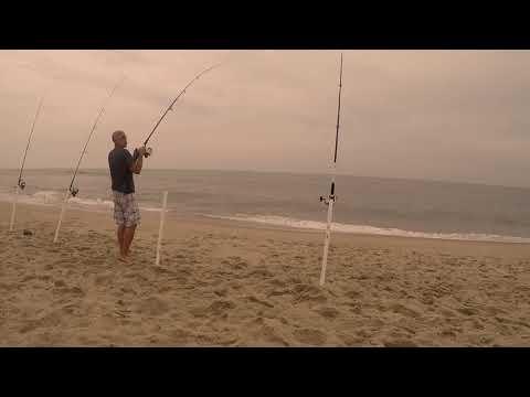 Nc Surf Fishin