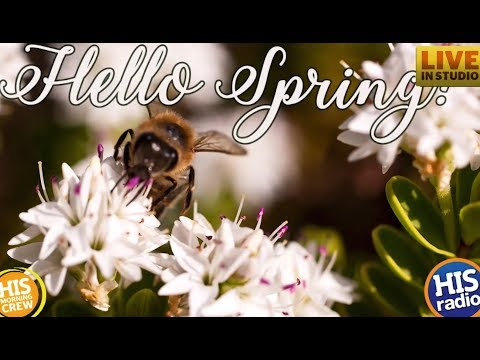 How to Celebrate the First Day of Spring with Freebies