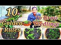 10 Golden Rules of Starting Seeds or Growing Seedlings at Home
