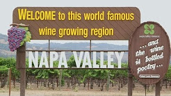 4 Unique Napa Valley Wineries You Need to Visit Now
