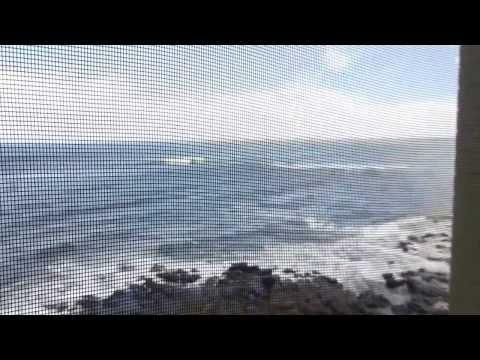 Poipu Condo Rental - Kauai - Kuhio Shores #313