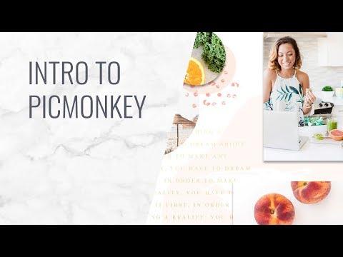 Intro To New PicMonkey