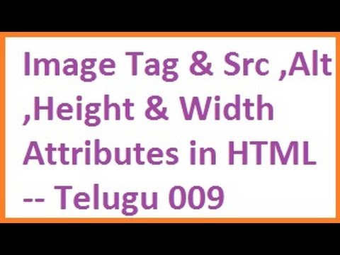 Image Tag And Src, Alt, Height And Width Attributes In HTML --  Telugu 09-vlr Training