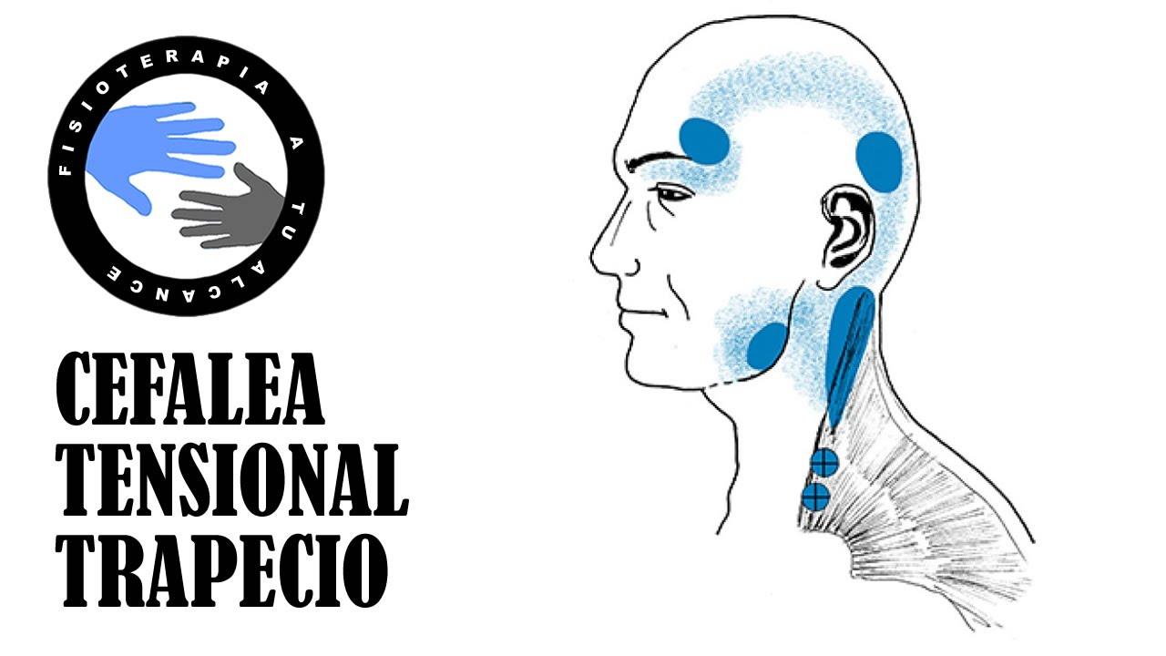 nudo en la parte posterior de la cabeza sobre el cuello