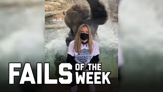 Bear With Me: Fails of the Week (January 2021)