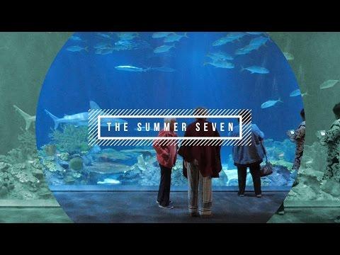 The Summer Seven  - Chicago Water Sport Rentals