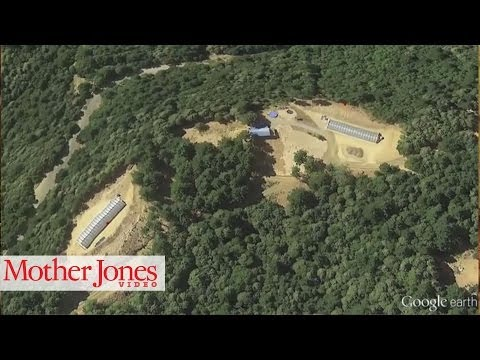 Google Earth Reveals Devastation Caused by Marijuana Growers