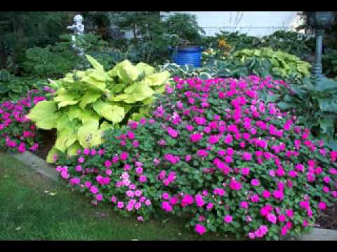 shade garden ideas youtube - Flower Garden Ideas Partial Sun