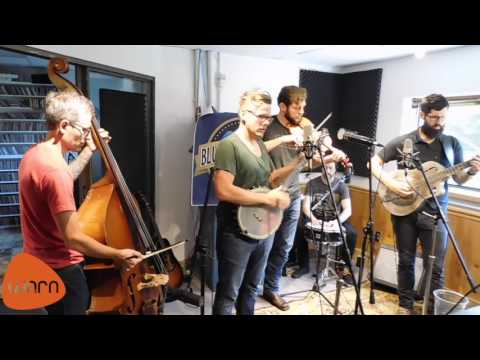 The Steel Wheels - Wild As We Came Here