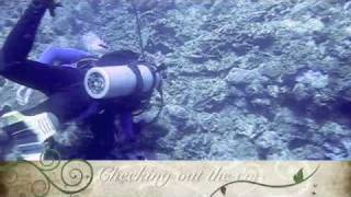 FVR dives Sarangani Bay