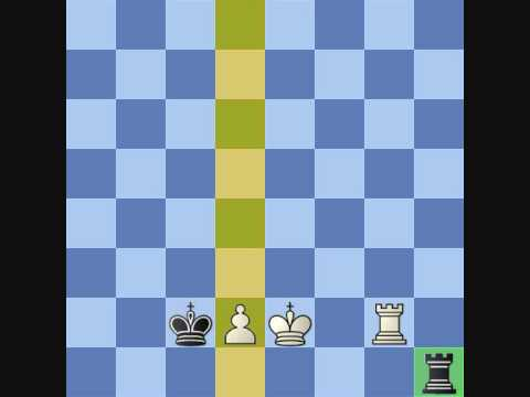 P.L. Chess Endgame Course #8 Checking Distance