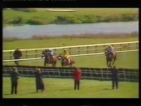 1995 Stanley Cooker-Tickell Champion Novice Hurdle