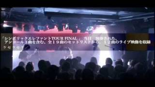 wooderd chiarie シンボリック・エレファント TOUR FINAL 初のオフィシ...