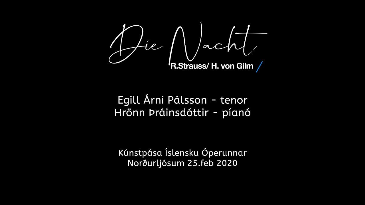 Die Nacht - Egill Árni Pálsson og Hrönn Þráinsdóttir