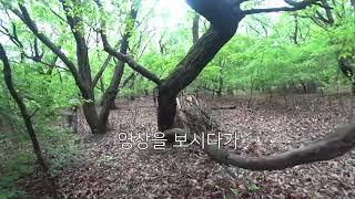 서바이벌 소개해드립니다. 1편 (필드소개)  경기/서울…