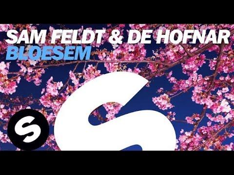 Sam Feldt & De Hofnar - Bloesem (Original Mix)
