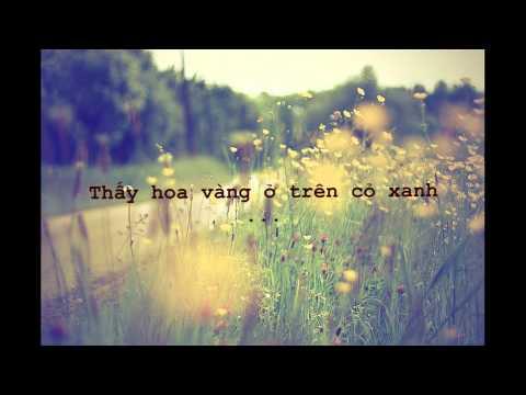 Tôi thấy hoa vàng trên cỏ xanh-Ái Phương