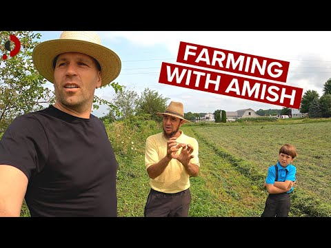 Download Weekend With Amish Farmer (life before internet) 🇺🇸
