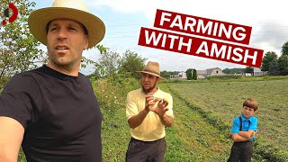 Weekend With Amish Farmer (life before internet) 🇺🇸
