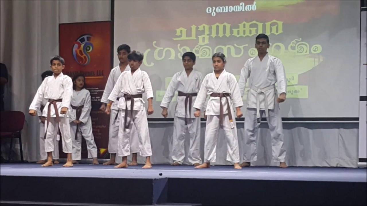 Adithya V Nayar - Golden Falcon Karate performance -Dubai
