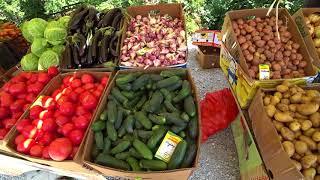 Сельскохозяйственная фруктово-овощная ярмарка в Дагомысе, рынок в Сочи: цены, товары, расписание